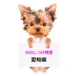 【保存版】犬のしつけ教室愛知県
