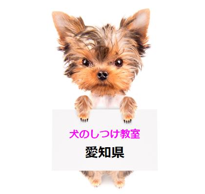 犬のしつけ教室 愛知県