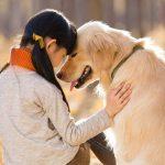 ふるさと寄付金(納税)で犬猫の殺処分ゼロを!名古屋市の取り組み