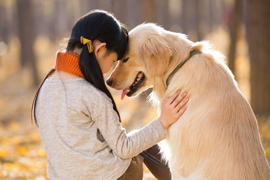 犬を飼うなら知っておきたい犬の十戒