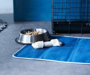 犬冷却マット熱中症対策