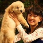 「犬の十戒」原文と翻訳の全文紹介と映画「犬と私の10の約束」を無料で見る方法!