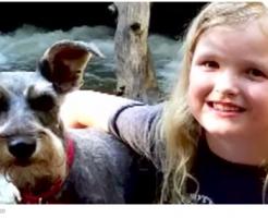 犬の水中毒の症状と対処法