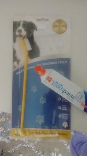 犬用の歯ブラシと歯磨き粉